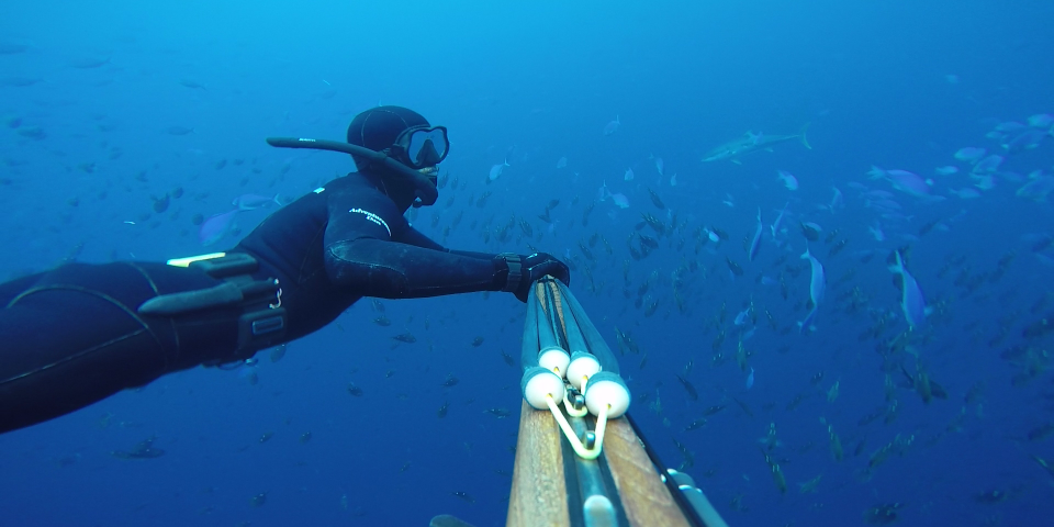 OC Spearos | Orange County's Largest Spearfishing and